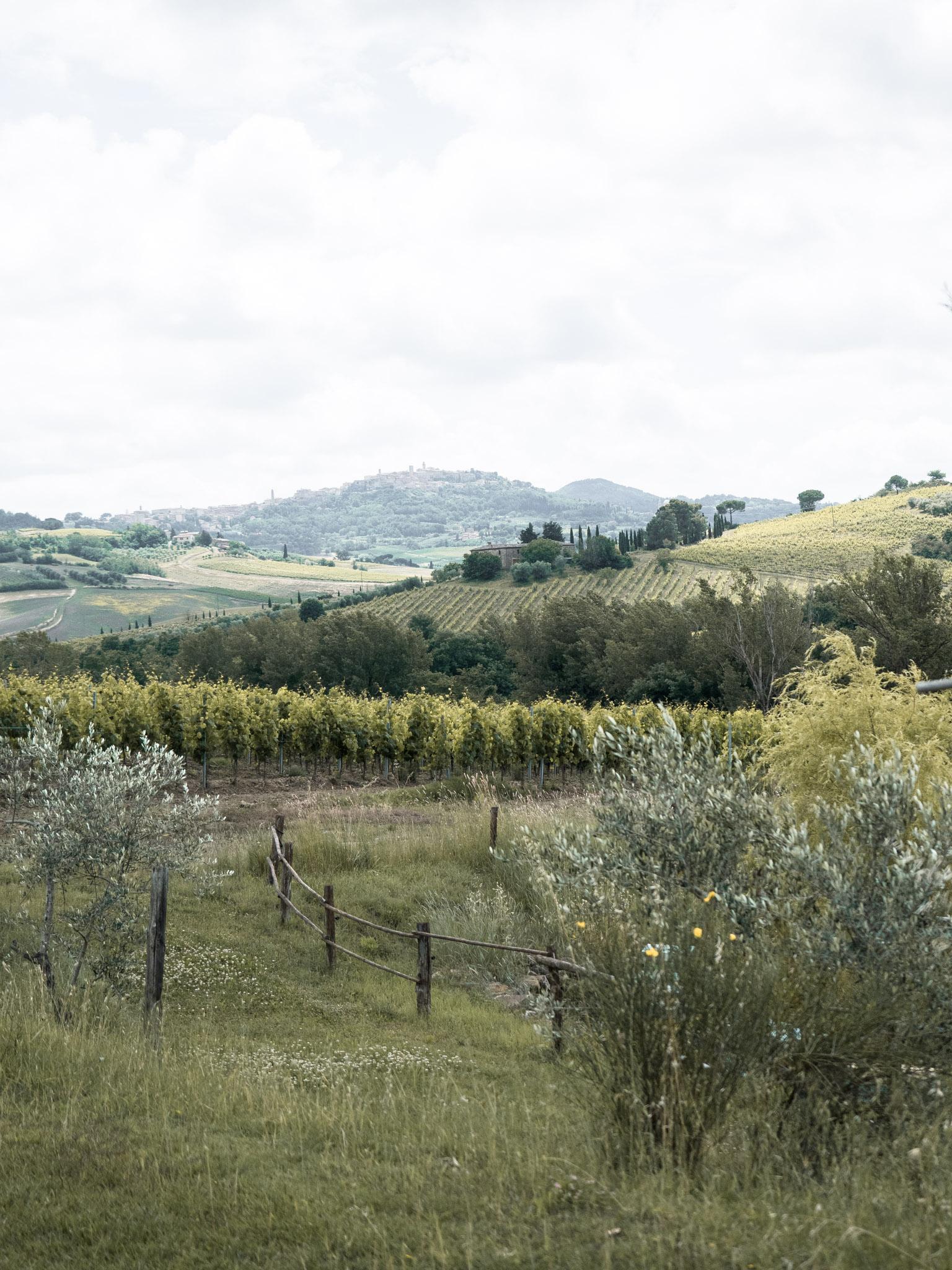 Follonico Bed & Breakfast di charme, Torrita di Siena - Toscana